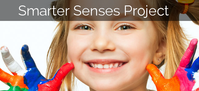 Smarter Senses Project Update